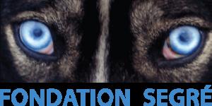 fondation-segre-logo
